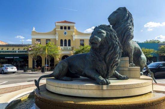 San Marco Lions Jacksonville